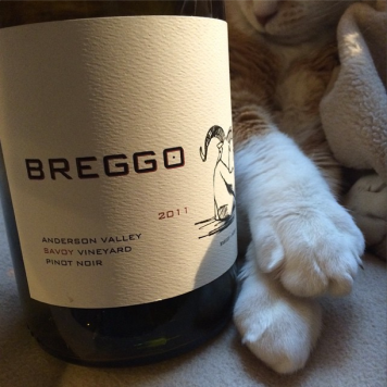 Consider yourself lucky if you can get your paws on some Breggo Pinot
